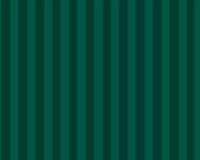 Natural Kraft Tint Stripe - Forest Green