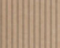 Natural Kraft Tint Stripe - Natural Groove