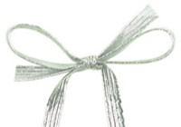 Elasti Loops - Silver
