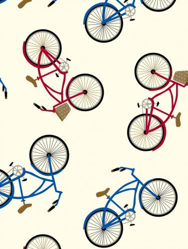 Girls & Boycycles