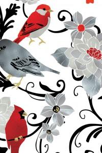 Elegant Cardinal