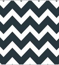 Everyday Tissue - Black Chevron