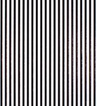 Everyday Tissue - Black Stripes