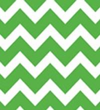 Everyday Tissue - Green Chevron